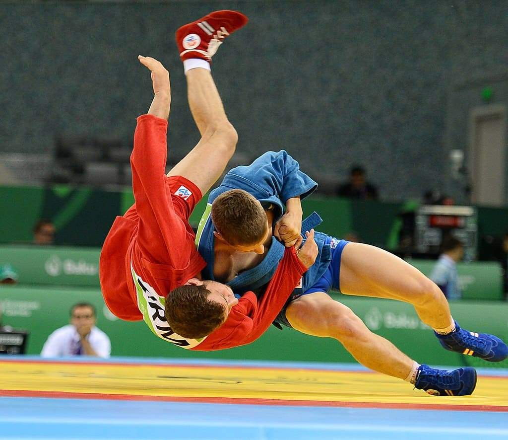 Read more about the article What Makes Sambo So Dominant