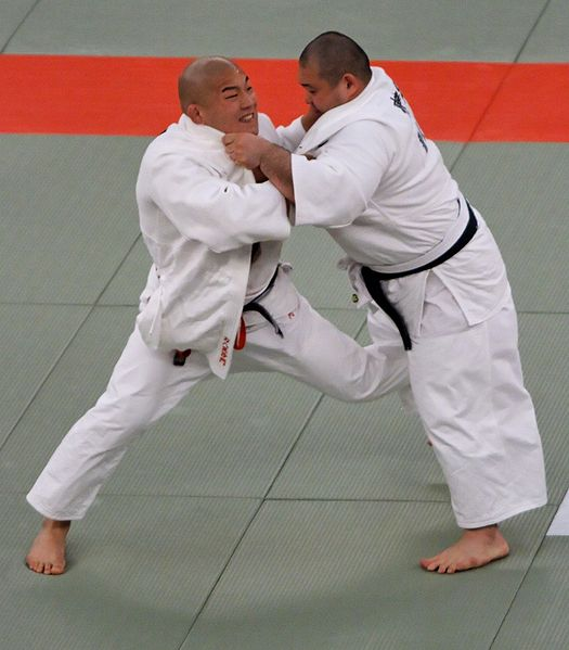 Read more about the article The Ultimate Guide to Judo